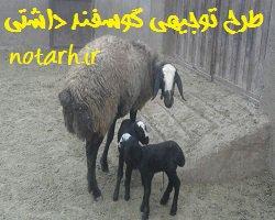 دانلود طرح توجیهی گوسفند داشتی |پرورش میش شیشک  بره قوچ |
