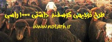 طرح توجیهی گوسفند داشتی 1000 راسی سال 97