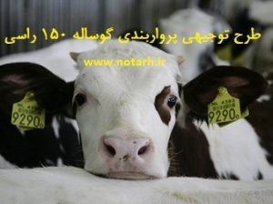 طرح توجیهی فنی اقتصادی پرواربندی گوساله 150 راسی صنعتی