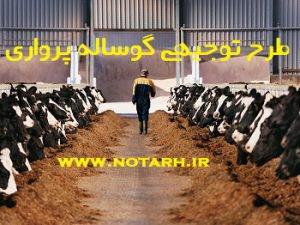 طرح توجیهی پرواربندی گوساله 1000 راسی - احداث گاوداری گوشتی
