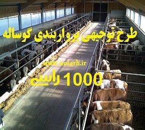 دانلود طرح توجیهی گوساله پرواری 1000 راسی سال 97 صنعتی