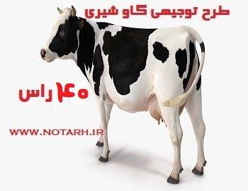 طرح توجیهی گاو شیری 40 راسی صنعتی جدید