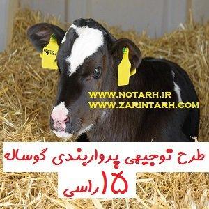 دانلود طرح توجیهی پرورش گوساله پرواری 15 راسی